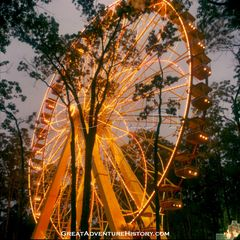 GA-043-Giant-Wheel-at-Night.jpg