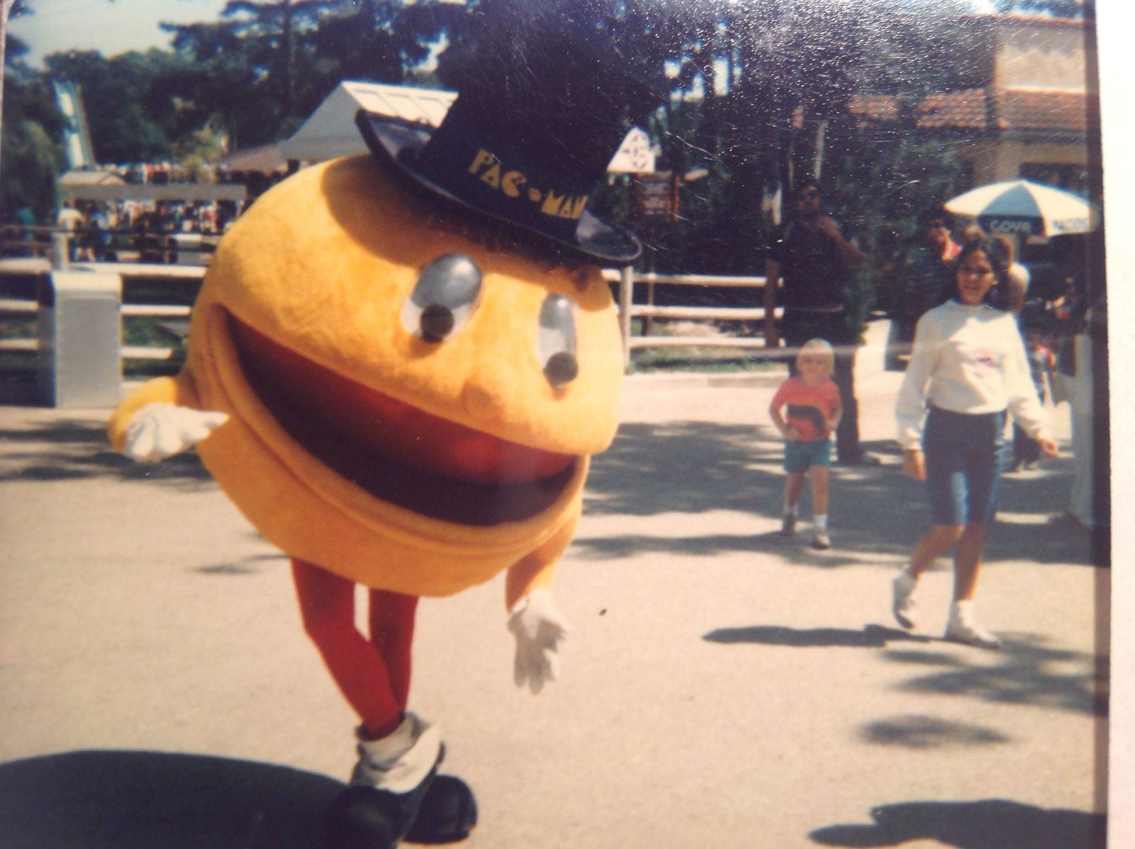 Pacman at Great Adventure
