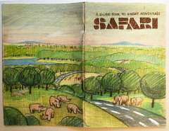 GA Safari Bklet cover areal view.jpg