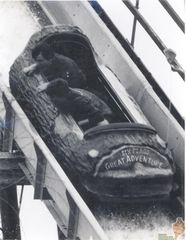 Seasick on the Log Flume 1982