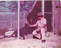 rick wallace with leopards in pen