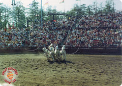 Crowded Great Arena.jpg
