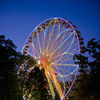 Fright Fest Rides   Big Wheel At dusk
