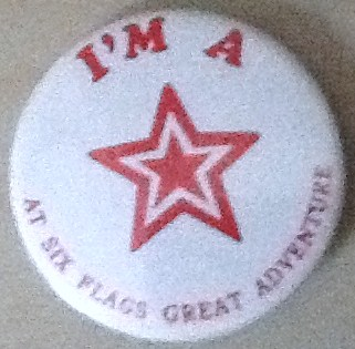 SFGA Recognition Pin
