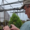 PHOTO   Frank Fackleman Of Barnegat builds A hanging basket