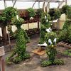 PHOTO   SFGAd greenhouses   topiaries 2