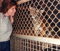Twila visits the Tiger Nursery