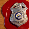 SecurityBadge10