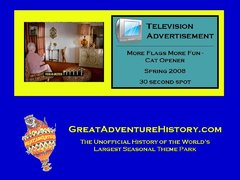 2008 - More Flags with Cat Opener