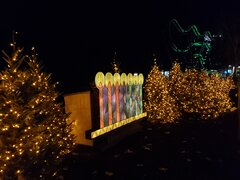 Joy to the World menorah luminary.jpg
