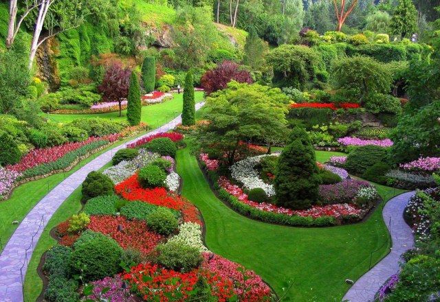 Green Park Gardens with full red flowers.PNG