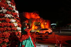 Poinsettia Princess greets cars in Poinsettia Peak.JPG