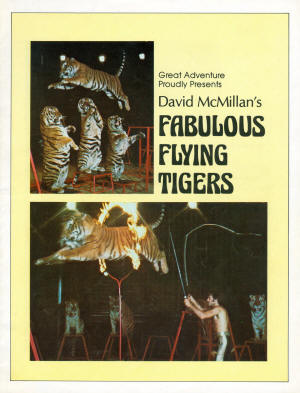 Flying%20Tigers%20Pg01%20copy_small.jpg
